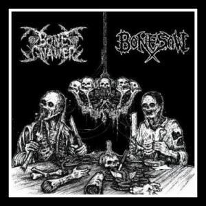 bonegnawer-bonesaw