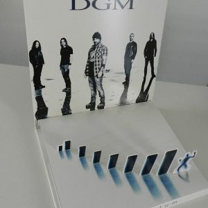 dgm-momentumlp1