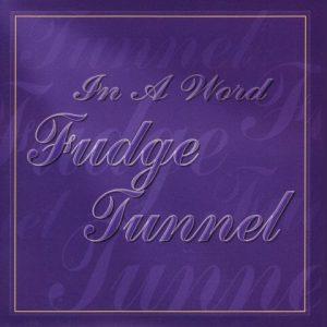 FudgeTunnel-Inaword