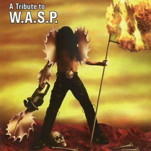 Wasp-AtributetoCD1