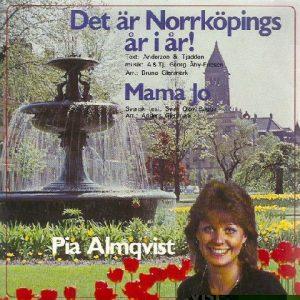 PiaAlmqvistDetarNorrkoping7a