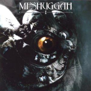 MeshuggahIcd1